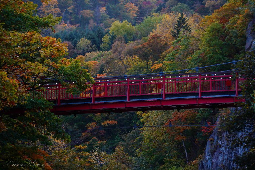 定山渓の岸から二見吊橋を見上げる
