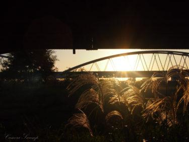 夕暮れ時に行きたい!西中島地区・十三野草地区から眺める大阪の街景色!